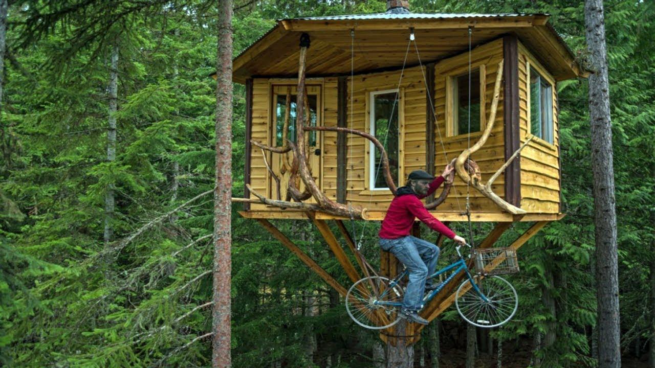 Simple Treehouse: Simple Tree House Ideas On Pinterest