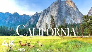 California 4K • Relaxing Music \u0026 Nature Soundscapes • Relaxation Film