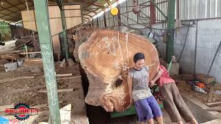 THE BIGGEST WOOD THAT CAN BE CUT AT THE SAWMILL