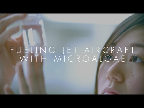 Innovation Japan【FUELING JET AIRCRAFT WITH MICROALGAE】