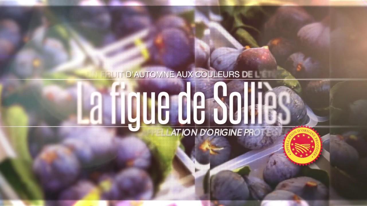 En Route Vers La 23eme Fete De La Figue De Sollies Pont