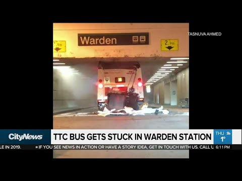 TTC bus damaged as driver goes through wrong tunnel