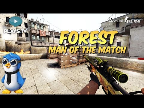 f0rest matchmaking Some matchmaking madess from last night with f0rest, jw, develop3 and nirreh enjoy watch me live on twitch:   contact me http://w.