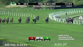 Vidéo de la course PMU PREMIO TINA WELLS 2005