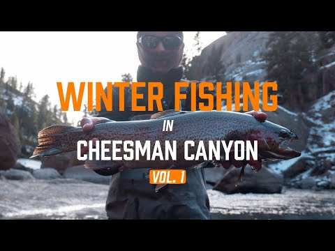 WINTER FISHING In Cheesman Canyon - VOL. 1