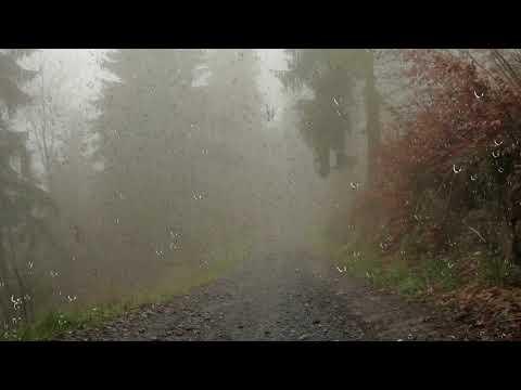 Звуки грозы и дождя. Сон под звуки дождя и грома. Райское наслаждение!
