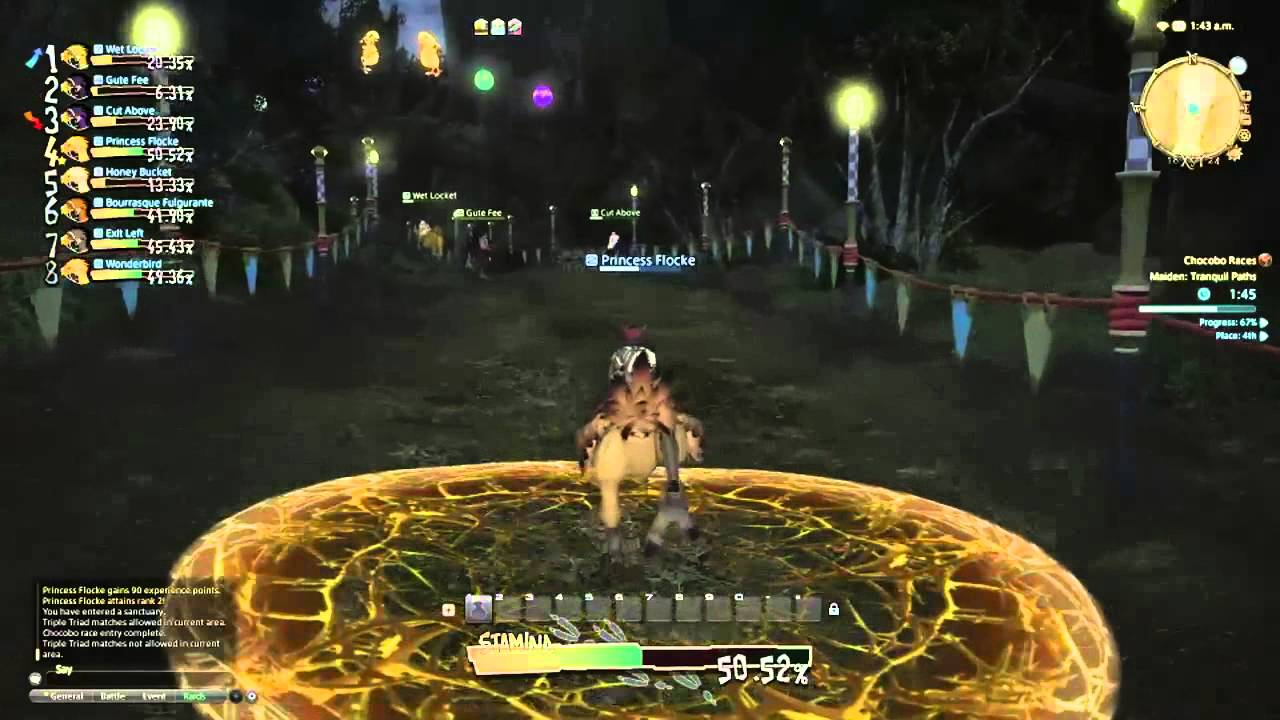Final Fantasy XIV A Realm Reborn Chocobo Race