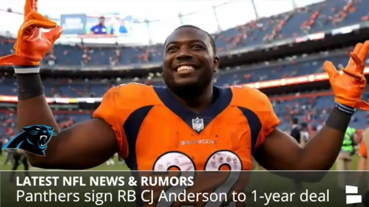 NFL News & Rumors: CJ Anderson To Panthers, Terrell McClain To 49ers, Rob Gronkowski Contract