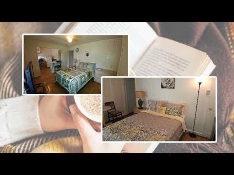 Affordable Alternative Hotel In Honolulu, Hi - The Plumeria Hostel Alternative