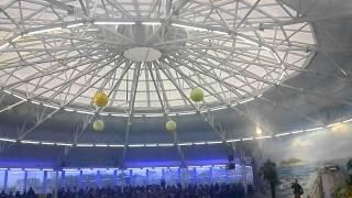 Дельфинарий Немо, Минск(, 2013-11-24T19:05:25.000Z)
