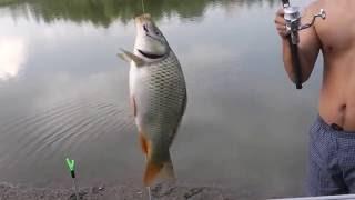 Рыбалка в алматы, ТЭЦ fisheman 0
