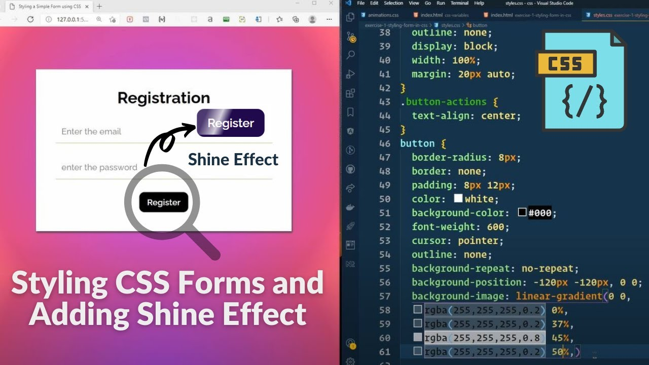 Styling a CSS Form & Adding a Shine Effect Using CSS Transitions : Exercise