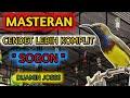Masteran Cendet Lebih Komplit  Sogon  Dijamin Josss  Mp3 - Mp4 Download