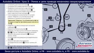 Autodata online обучение  - ремни и цепи привода механизма газораспределения. Урок 8