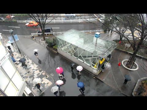【LIVE CAMERA】原宿表参道 ライブ映像 Shibuya scramble crossing 「STUDIOEIMEIが運営するライブカメラ。