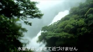 屋久島パーソナルエコツアー http://www.relaxin-yaku.com/ 2014年5月27...