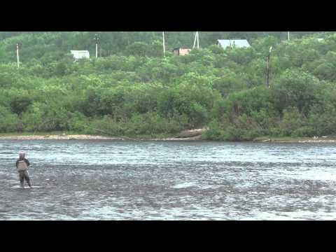 шонгуй мурманская область рыбалка