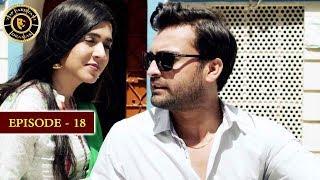 Surkh Chandni  Episode 18  Top Pakistani Drama