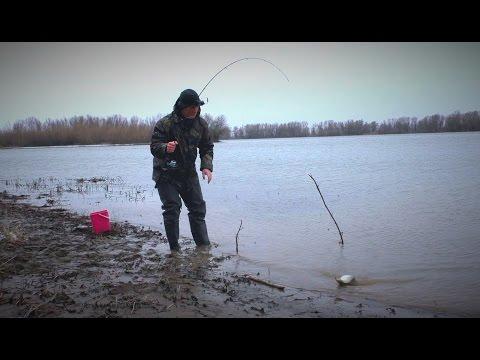 ловля рыбы вблизи мостов