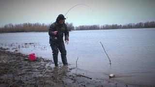 Первая рыбалка на донку. Весенняя рыбалка 2017. Рыбалка на открытой воде.