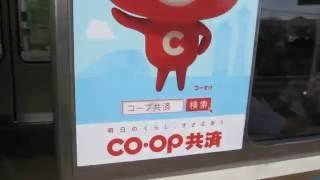 JR西日本 281系 特急 はるか 223系2000番台 W24編成 coop共済ステッカー...
