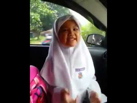 Najib bodoh lagu