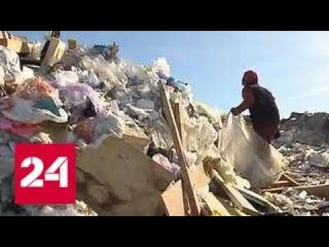 Свалка под Волоколамском травит местных жителей - Россия 24