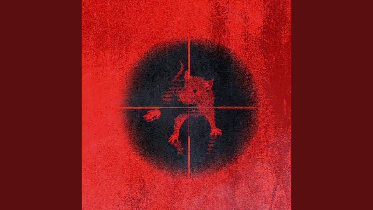 Download Killing The Rats