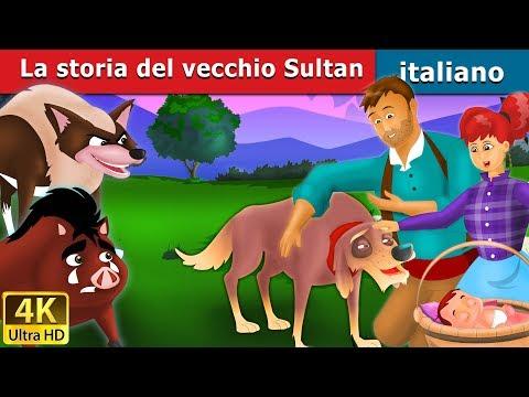 La storia del vecchio Sultan   Storie Per Bambini   Favole Per Bambini   Fiabe Italiane