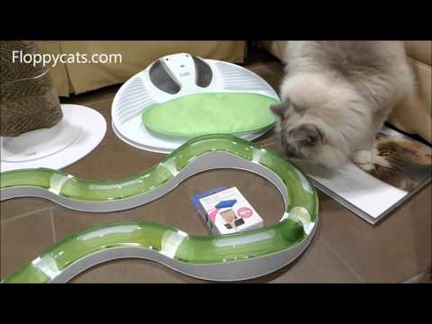 Hagen Catit Oasis Product Review Unboxing Arrival Video - ねこ - ラグドール - Floppycats
