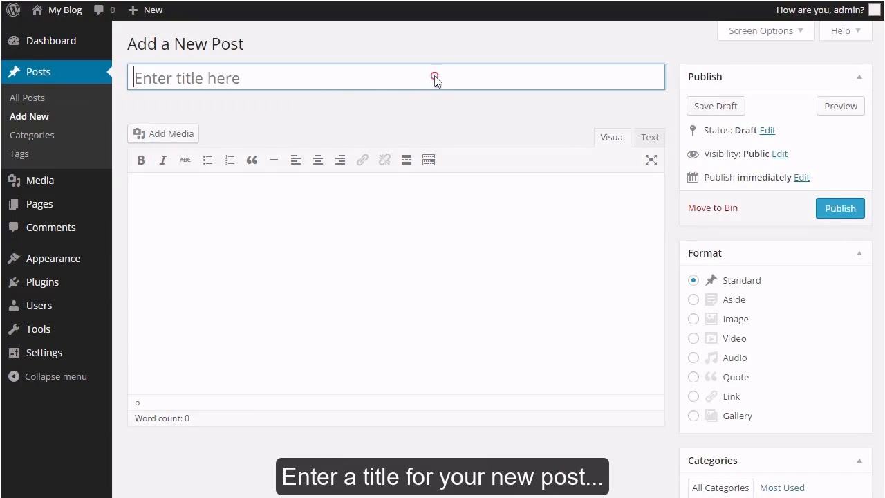 How to write a new post in WordPress?
