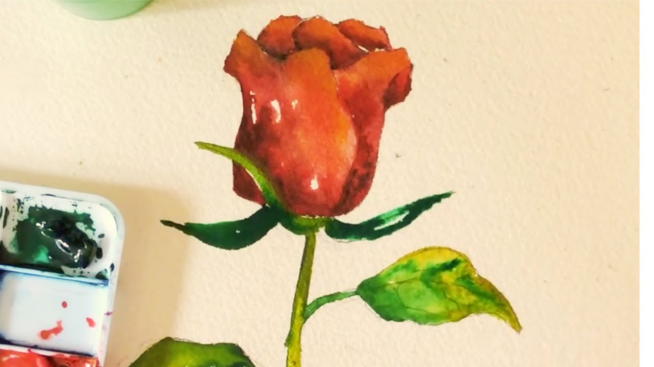 Red rose bud watercolor tutorial a step by step art for How to paint a rose in watercolor step by step