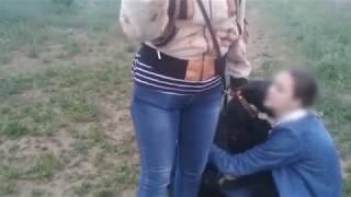 «Избили мою собаку, потом меня», - волжанин