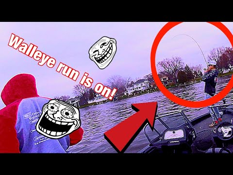 Walleye Run On The Wolf River!!!!! (2020)