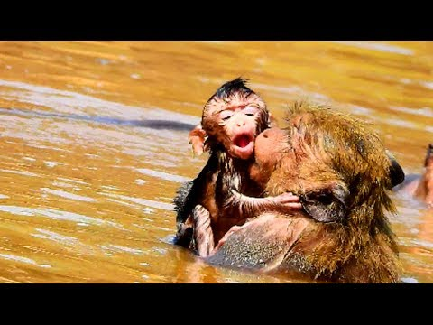 Poor new baby! New baby nearly drown in the water| Why mum bring baby into water? so pity on baby