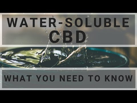 Water Soluble CBD! What You Need To Know...