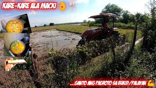 Vlog #294: KARE-KARE (TUWALYA NG BAKA) + PAGROTO SA BUKID/PALAYAN | MACKI MOTO