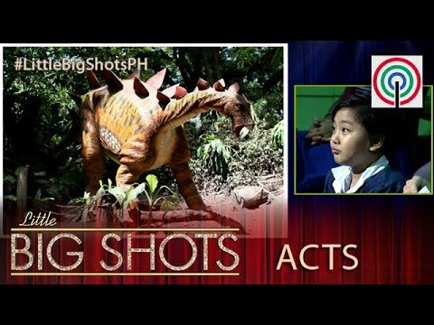 Little Big Shots Philippines: Ardleigh |  6-year-old Dinosaur Kid Expert