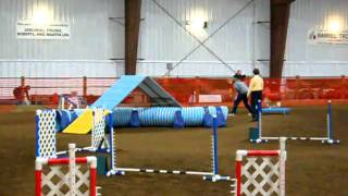 Gem City Dog Agility - Exc B Std 2/26/11