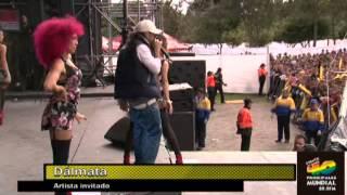 Pasarela - Dalmata Evento 40 [Mayo 2014] 3