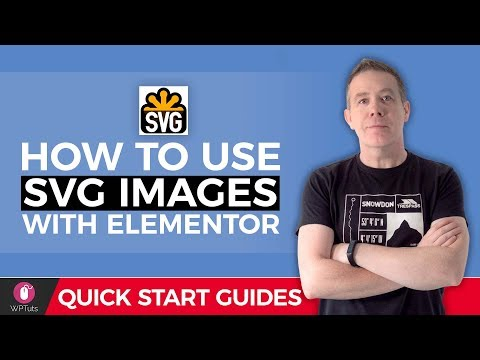 SVG Tutorial For Beginners – WordPress & Elementor
