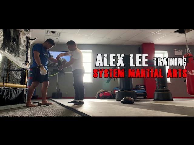 Training System - System Martial Arts # 1 Alex Lee