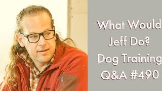 Stop a dog from lunging   Training a dog to sit   What Would Jeff Do? Dog Training Q & A #490
