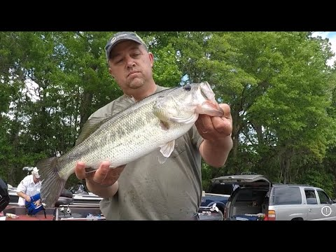 Savannah River Bass Fishing( Tournament)