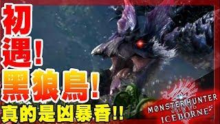【魔物獵人世界冰原MHWI】初遇-黑狼鳥!起肖的瘋子鳥一隻!香!