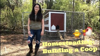 Homesteading: Building A Chicken Coop