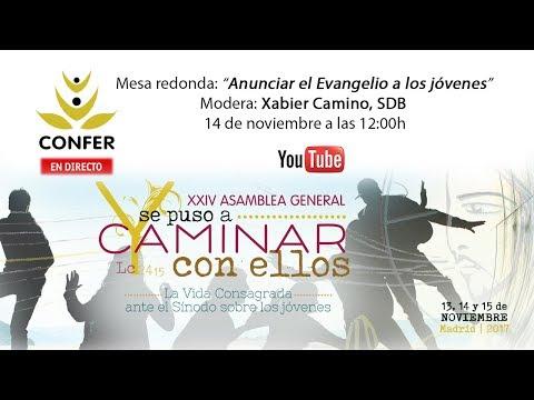 """XXIV Asamblea General CONFER 2017. Mesa redonda: """"Anunciar el Evangelio a los jóvenes""""."""