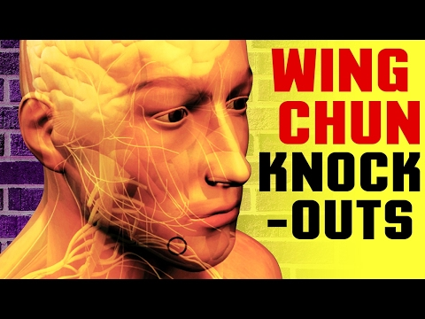 Wing Chun KNOCKOUTS! How to knockout someone  in Short Range - Pressure Point Dim Mak Chi Striking