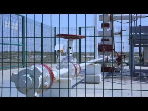 Lukoil Uzbekistan Operating Company & Eriell Corporation