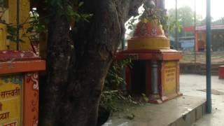 Mangaon Datta darshan